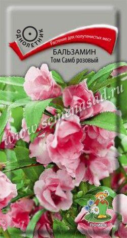 Бальзамин Том Самб розовый ЦП