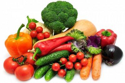 Био удобрения Ортон. Готовимся к большому урожаю — ЕВРОСЕМЕНА овощи в наличии
