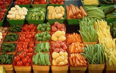 Наши Евросемена = Ваш успех.  — Профессиональная коллекция овощи — Семена овощей