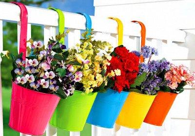 """Наши Евросемена = Ваш успех.  — Премиум """"2 в 1"""" цветы — Семена цветов"""