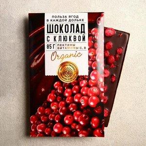 Шоколад молочный «Польза ягод» с клюквой 85 г