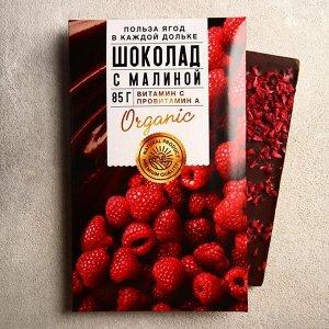 Шоколад молочный «Польза ягод» с малиной 85 г