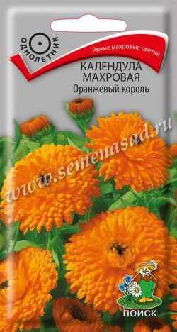 Календула махровая Оранжевый король ЦП