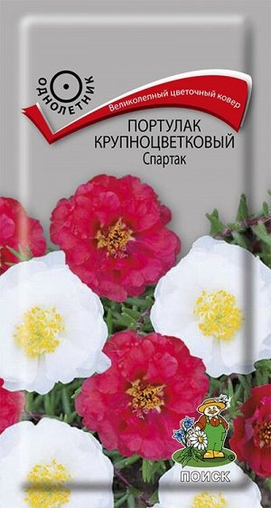 Портулак крупноцветковый Спартак ЦП