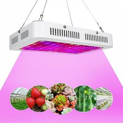 Садовая Империя! Все самое лучшее для Вашего участка! (10.02) — Освещение для растений