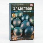 Смеси для окрашивания пищевых продуктов «Хамелеон»