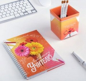 """Подарочный набор """"Любимый учитель"""": ежедневник и органайзер для ручек"""