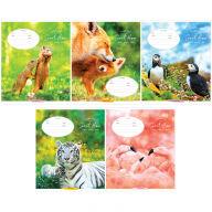 "Тетрадь 12л., линия ArtSpace ""Животные. Lovely mother"""