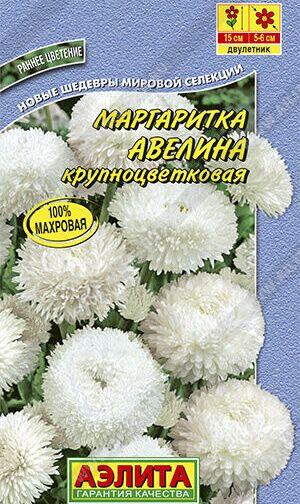 Маргаритка Авелина крупноцветковая 0,05г А