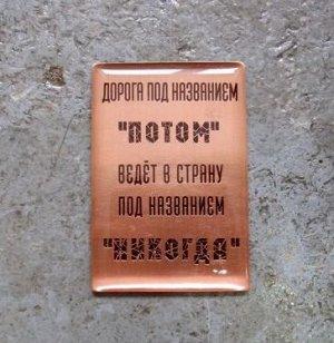 """Магнит """"Дорога под название """"Потом"""" ведет в страну под названием """"Никогда"""" (Медь)"""