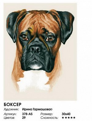 Набор для творчества Белоснежка картина по номерам на холсте 30*40 см Боксер6