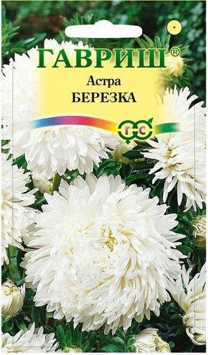 Астра Березка, однолетняя (воронежская белая) 0,3 г DH