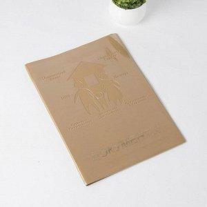 Обложка документы д/семьи, 22,5*1,0*31, с вкладышами ПВХ на 1 комплект, бежевый