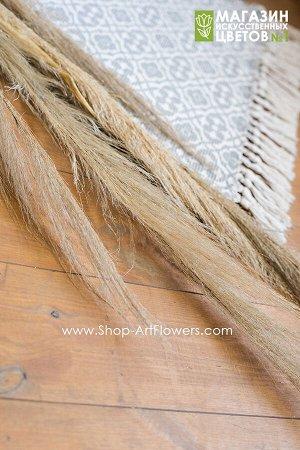 Кортадерия без пуха (пампасная трава)