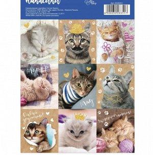 Наклейки «Замуррчательные котики», 11 × 16 см