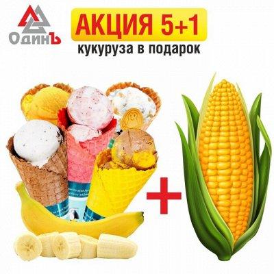 Шикарный выбор чизкейков🍰 — Акция на мороженое 33 Пингвина 60гр 5+1 Кукуруза в подарок! — Мороженое