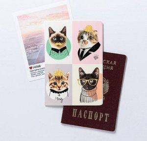 """Обложка для паспорта """"Замурчательные котики"""""""