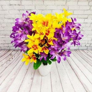 Орхидея Дендробиум, ветка
