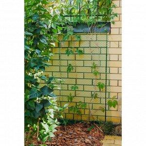Сетка садовая, 0.5 ? 5 м, ячейка 1.5 ? 1.5 см, зелёная, Greengo