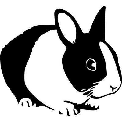 Огромный выбор классных наклеек для интерьера и авто — Зайцы. Кролики