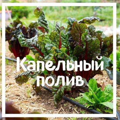 Хатка бобра на даче.Только необходимое садоводу и огороднику — Капельный Полив. Используйте воду из бочек без насоса. — Садовый инвентарь