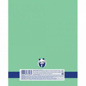 "Тетрадь А5 48 л. HATBER Premium скоба, клетка, обложка картон, бумага 80 г/м2, ""Панда"", 48Т5A1_23630"