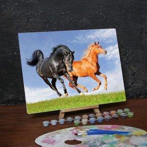 Роспись по номерам без подрамника «Лошади», 40 х 30 см