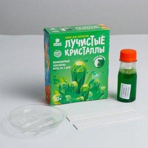 Набор для творчества «Лучистые кристаллы», цвет зелёный