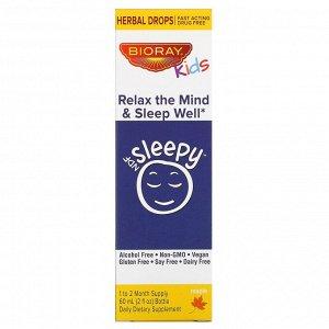 Bioray, NDF Sleepy для детей, Relax The Mind & Sleep Well (расслабление и крепкий сон), со вкусом кленового сиропа, 60 мл (2 жидкие унции)