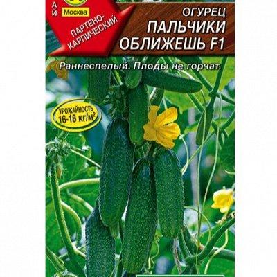 Семена АЭЛИТА: огромный выбор семян. В наличии!  — Семена огурцов — Семена овощей