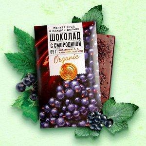 Шоколад молочный «Польза ягод» со смородиной 85 г.