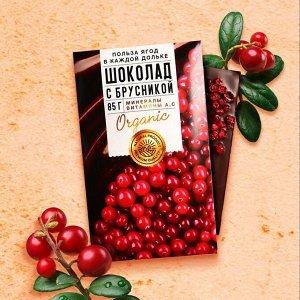 Шоколад молочный «Польза ягод» с брусникой 85 г.