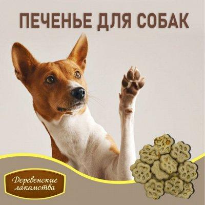 KARMY / ZооRING / ЛАКОМСТВА - 🐶 Счастливая жизнь питомца — Печенье для собак: выпечка, диетическое мясо, овощи — Лакомства и витамины