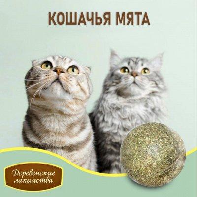 Деревенские лакомства - Ваш питомец будет признателен! — Кошачья мята, мятные игрушки и мыльные пузыри — Лакомства и витамины