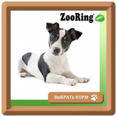 KARMY / ZооRING / ЛАКОМСТВА - 🐶 Счастливая жизнь питомца — Влажный корм ZOORING для щенков и взрослых собак — Корма