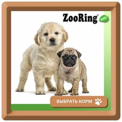 KARMY / ZооRING / ЛАКОМСТВА - 🐶 Счастливая жизнь питомца — Сухой корм ZOORING для щенков — Корма