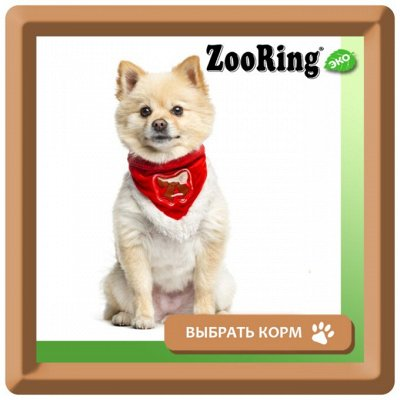KARMY / ZооRING / ЛАКОМСТВА - 🐶 Счастливая жизнь питомца — Сухой корм ZOORING для собак мелких пород — Корма