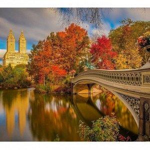 Набор ДТ Картина мозаикой Парк в Нью-Йорке 30*30 см KM0236