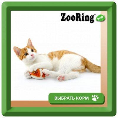 Деревенские лакомства - Ваш питомец будет признателен! — Влажный корм ZOORING для котят и взрослых кошек — Корма