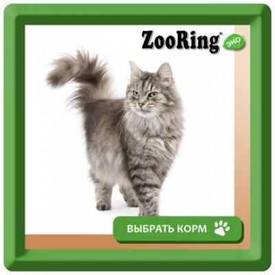Деревенские лакомства - Ваш питомец будет признателен! — Корм ZOORING для кошек крупных пород — Корма