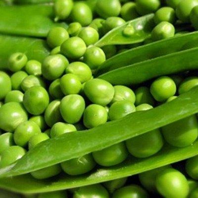 Распродажа луковичных и семян! Количество ограничено! — Горох, фасоль, бобы — Семена овощей