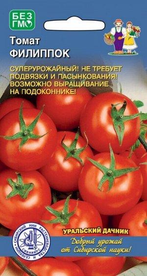 Томат Филиппок (УД) СЕЛЕКЦИЯ СИБНИИРС! Новинка!!!