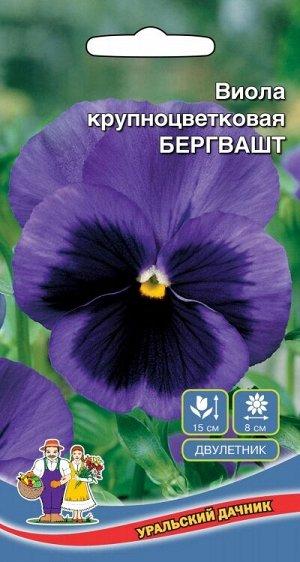 Цветы Виола Бегрвашт крупноцветковая (УД) (Любимый сорт житетелей Чехии!выс15см,д8см)