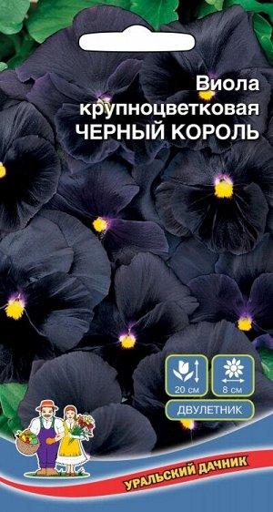 Цветы Виола крупноцветковая - Чёрный король (УД) (цветки крупные, бархатисто-чёрные)