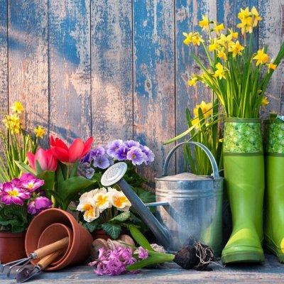Дачный сезон! НЕ ПРОПУСТИ! Более 2000 видов семян!   — Календарь садовода — Семена