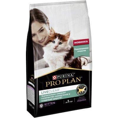 Все необходимое для любимых питомцев - очень много новинок! — Корма Pro Plan для кошек — Корма
