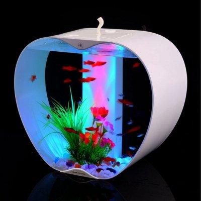 Для животных. Много новинок: корма, наполнители, лакомства — Оборудование для аквариума — Аксессуары для аквариумов