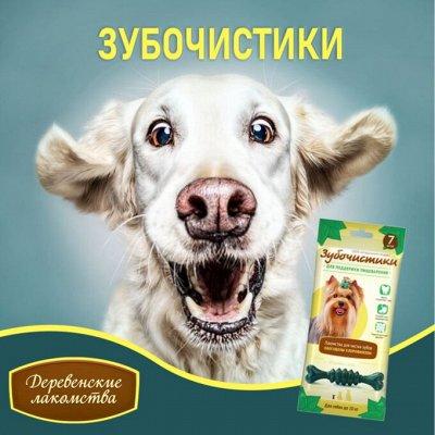 KARMY / ZооRING / ЛАКОМСТВА - 🐶 Счастливая жизнь питомца — Зубочистики от 41 р! — Лакомства и витамины