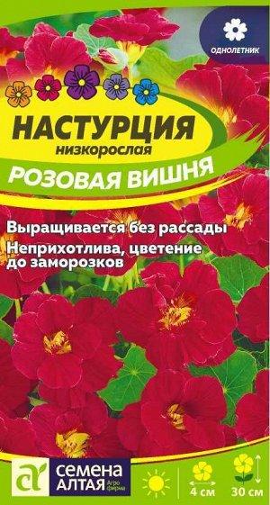 Настурция Розовая вишня низкоросл./Сем Алт/цп 1 гр.