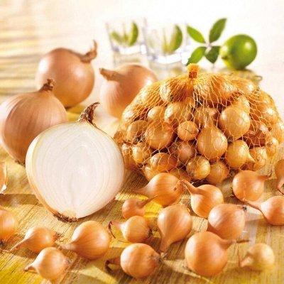 Экспресс! Мудрый дачник! Лук - Севок в наличии!✔ — Лук Севок! — Семена овощей